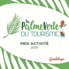 La Palme Verte du Tourisme 2019, Prix Activité